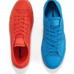 Converse Ox Low Summer Mes copy